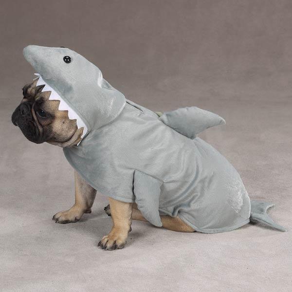 Land Shark 171 Stay Home Papa